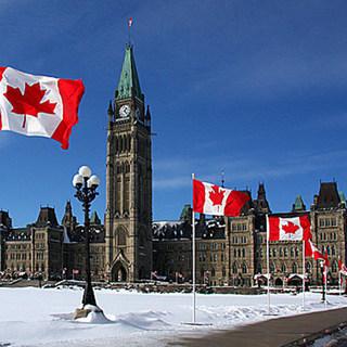 Ottawa pickup legacy square thumb