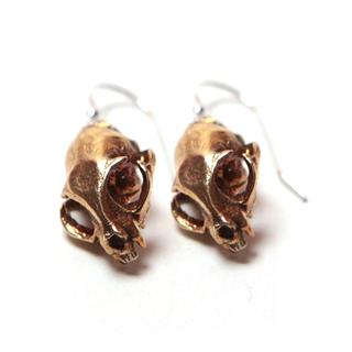 Domestic cat earrings yb legacy square thumb