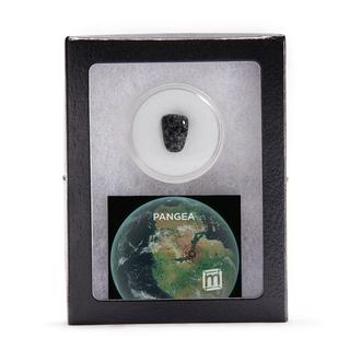 Add on pangea 1000 legacy square thumb